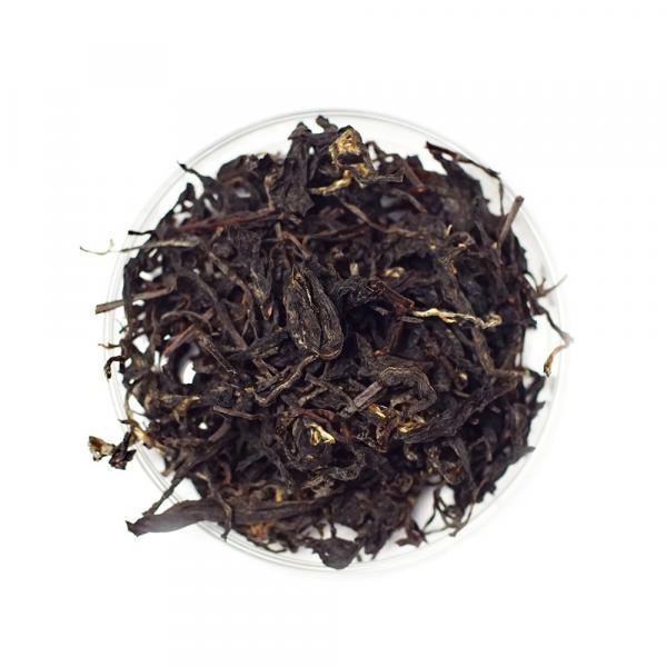 Красный чай Хоста Краснодарский фото