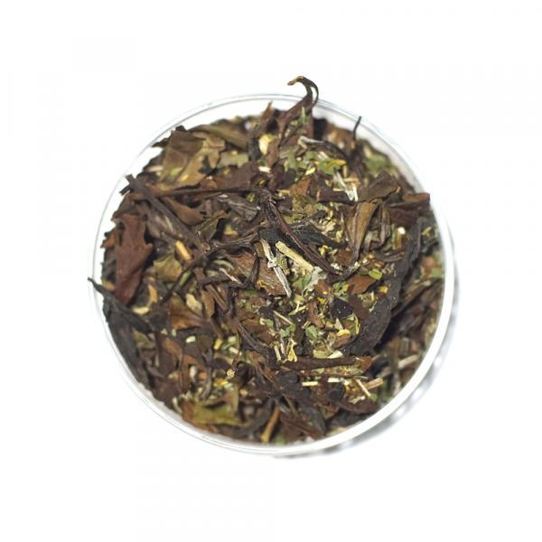 Травяной чай «Светел и свеж» с зизифорой и зверобоем