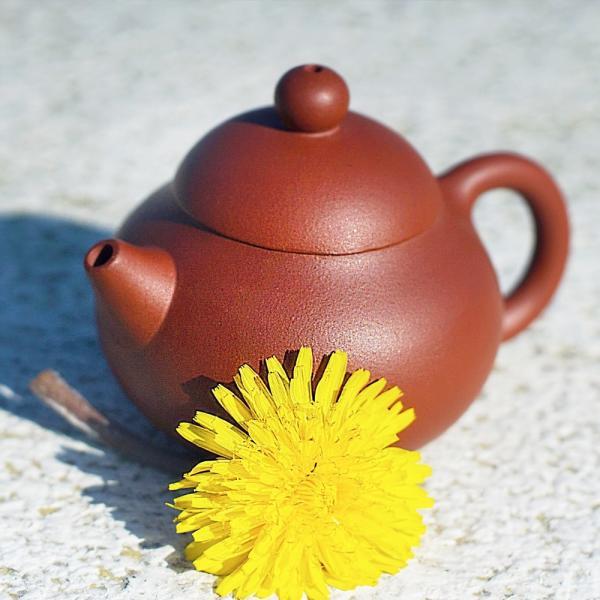 Чайник малой эгоист фото