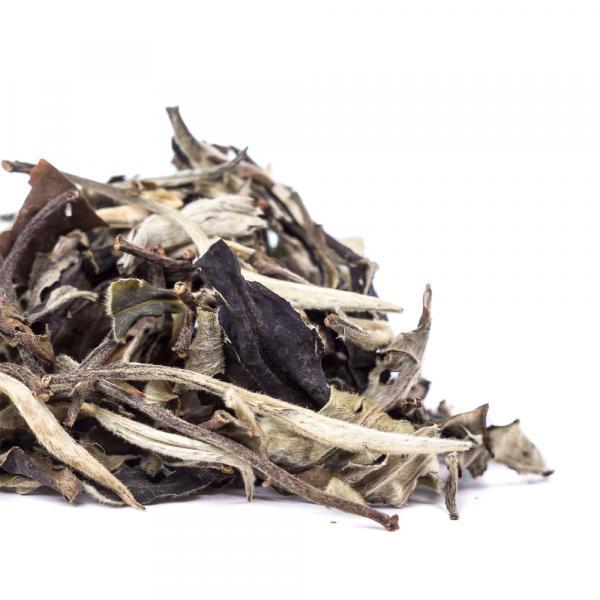 Белый чай Юэ Гуан Бай «Белый лунный свет»