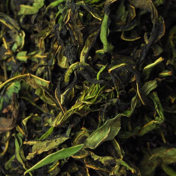 Русский Иван-чай кипрей узколистный зеленый