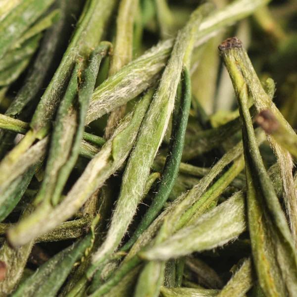 Желтый чай Хо Шань Хуан Я