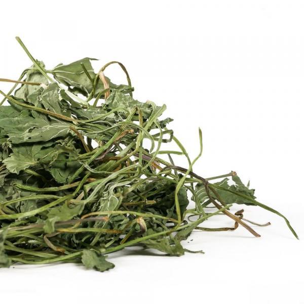 Травяной чай Готу Кола