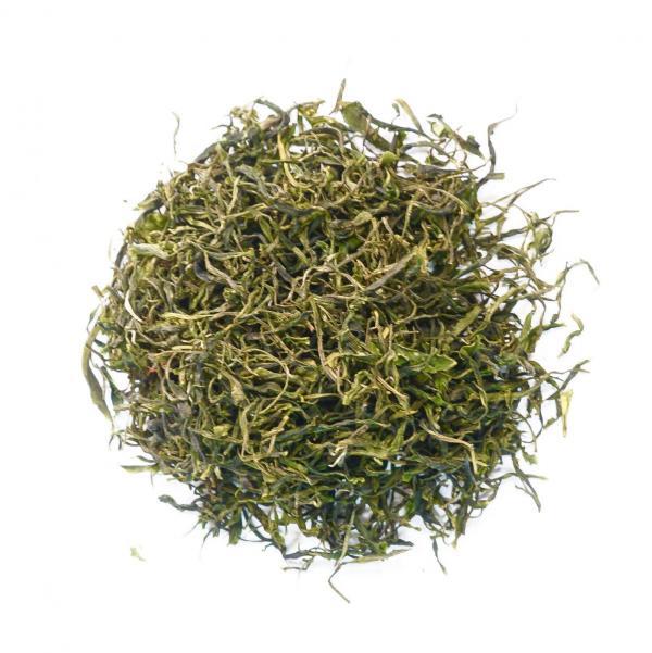 Зеленый чай «Хоста»
