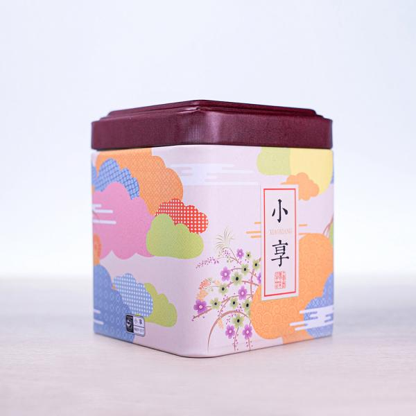 Баночка для чая «Радужный камуфляж» 350мл