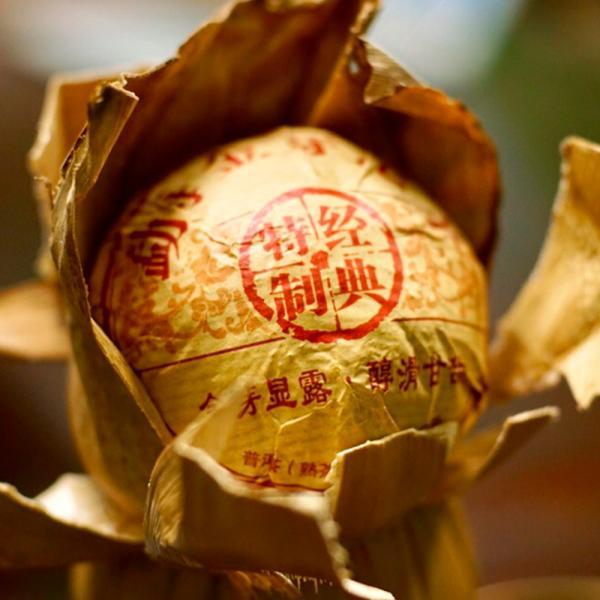 Шу Пуэр Золотой Бутон натура фото